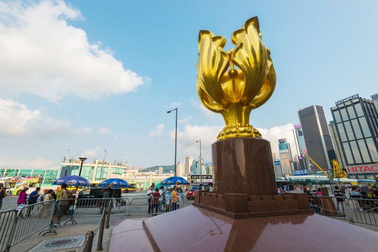 Golden Bauhinia Square4