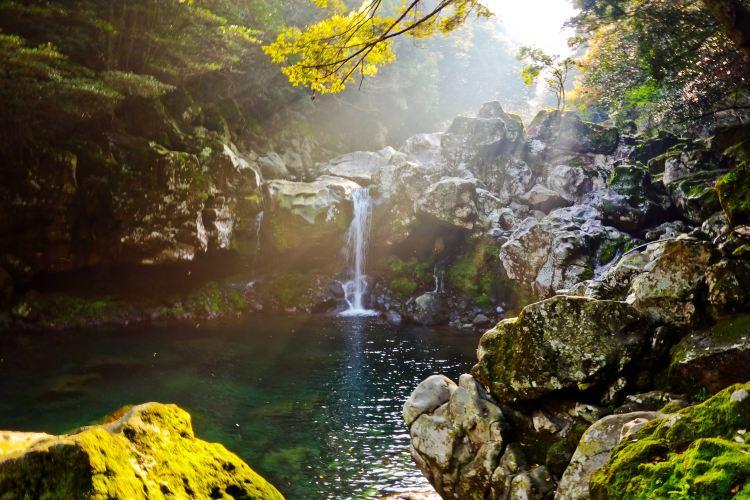 한라산 국립공원1
