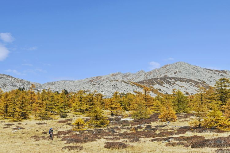 Taibai Mountain National Forest Park2
