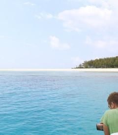[桑给巴尔群岛游记图片] 绿色风情,桑给巴尔岛 2