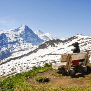 卢塞恩游记图文-瑞士,大概满足了所有你对于美的想象