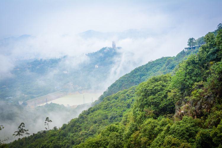 Guanyin Mountain