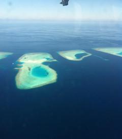 [哈库拉岛游记图片] 马代哈库拉岛6天4晚游