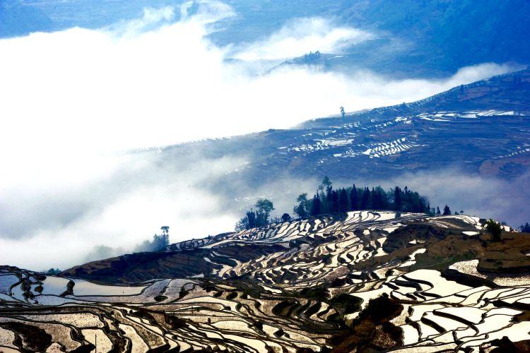 Honghe Hani Rice Terraces1