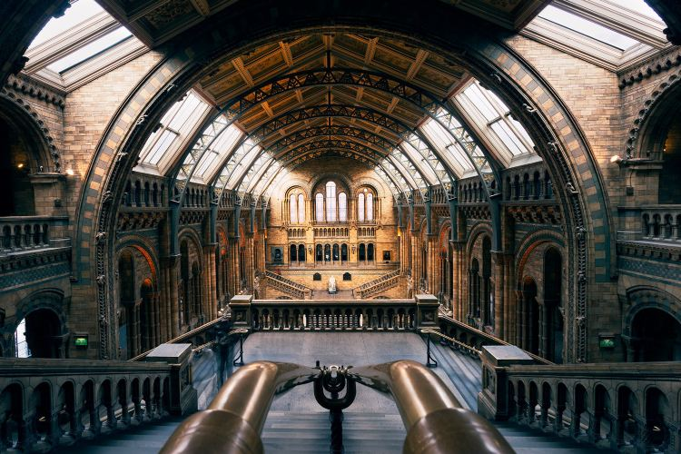 Natural History Museum2