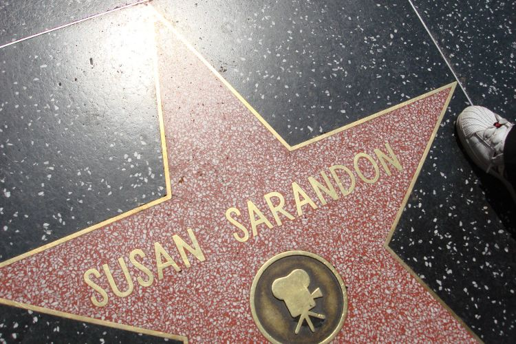 Hollywood Walk of Fame4