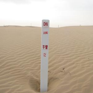 鄂托克前旗游记图文-在内蒙古鄂托克前旗戏沙丘