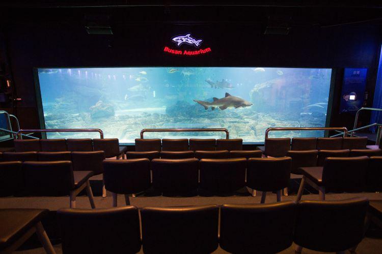 Busan Aquarium1