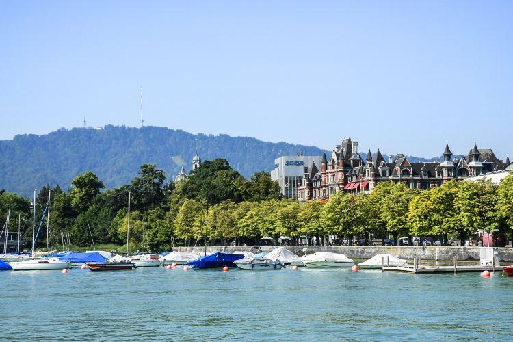Lake Zurich1