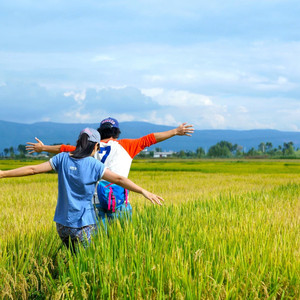 大城游记图文-开上小G去泰国——泰国、云南66天自驾