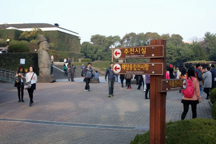 Jeju Folklore & Natural Museum2