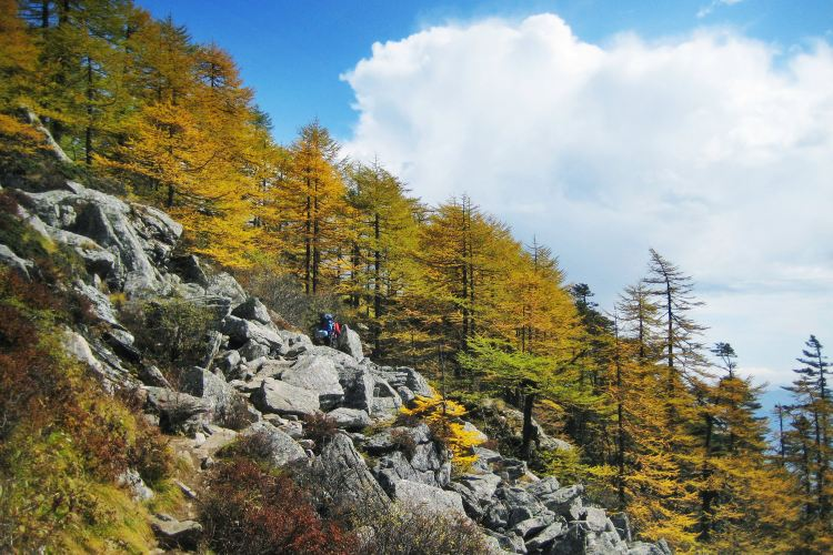 Taibai Mountain National Forest Park1
