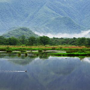 万州区游记图文-一路向东,不为那神农架的野人
