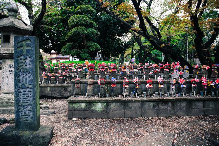 Zojo-ji Temple1