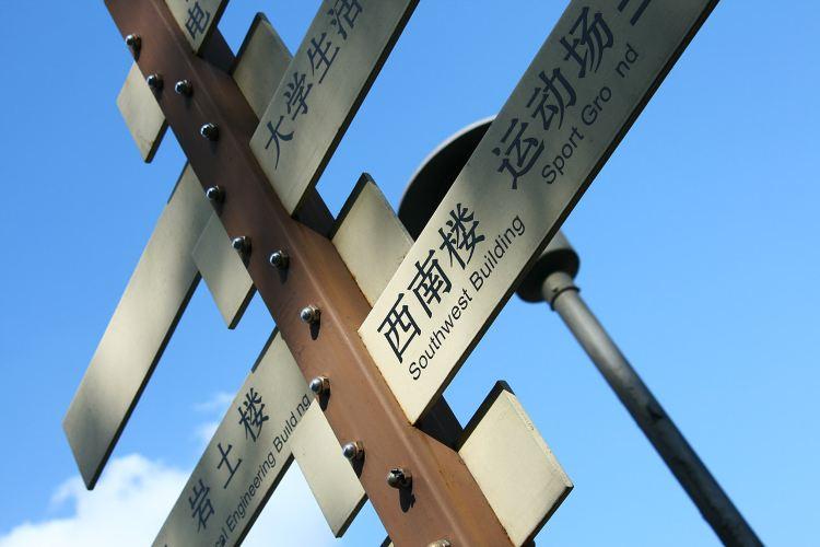 Tongji University4