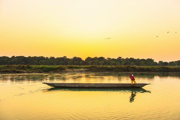 Chitwan National Park4