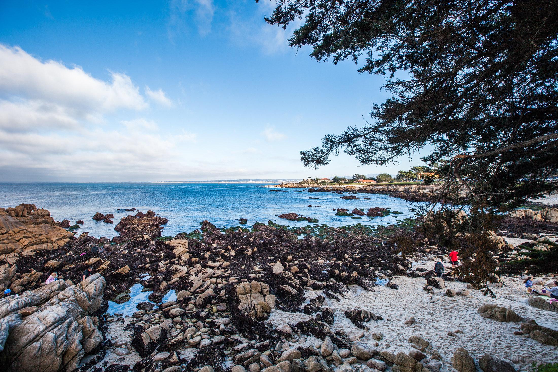 蒙特雷湾旅游景点图片
