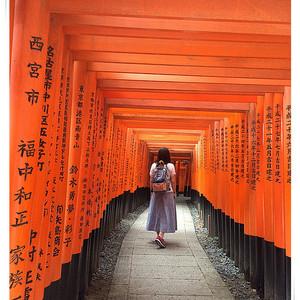 东京都游记图文-初探日本的浮光掠影--渐行渐远之行走京阪东