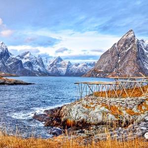 塔林游记图文-蹓跶!惊艳的冬季北极圈(绚烂极光,狗拉雪橇,裸体桑拿)