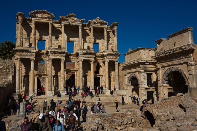 The Celsus Library4