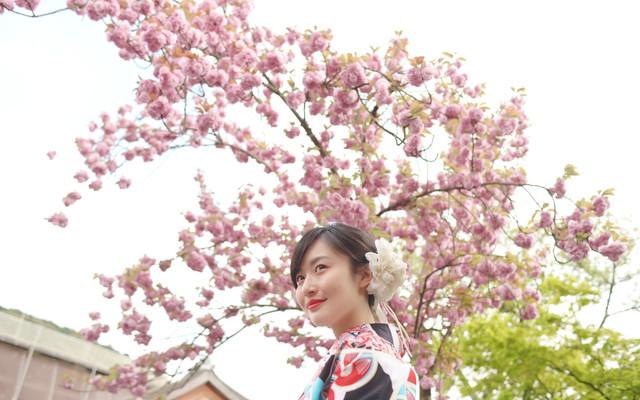 「侣行」环球旅行日本之名古屋,京都