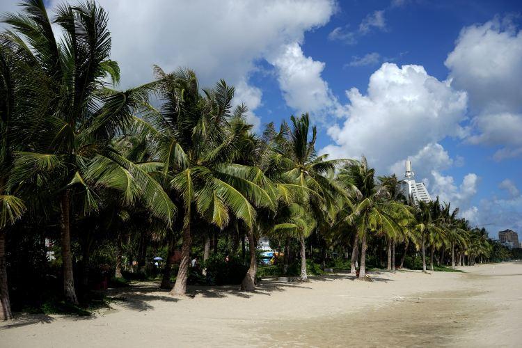 Coconut Dream Corridor3