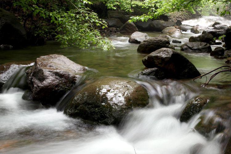 大奇山國家森林公園2