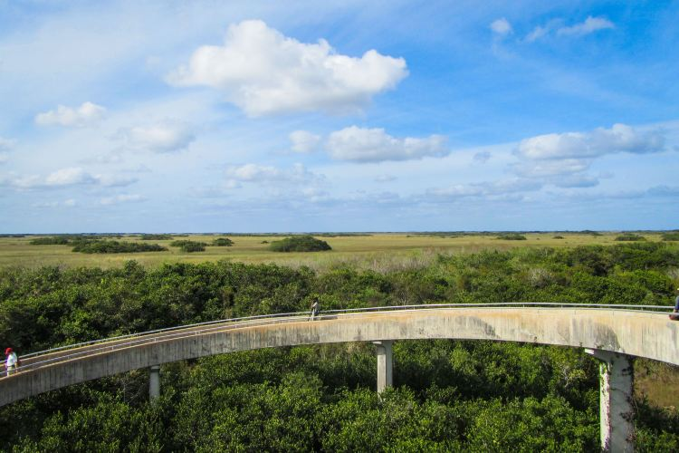 Everglades National Park4