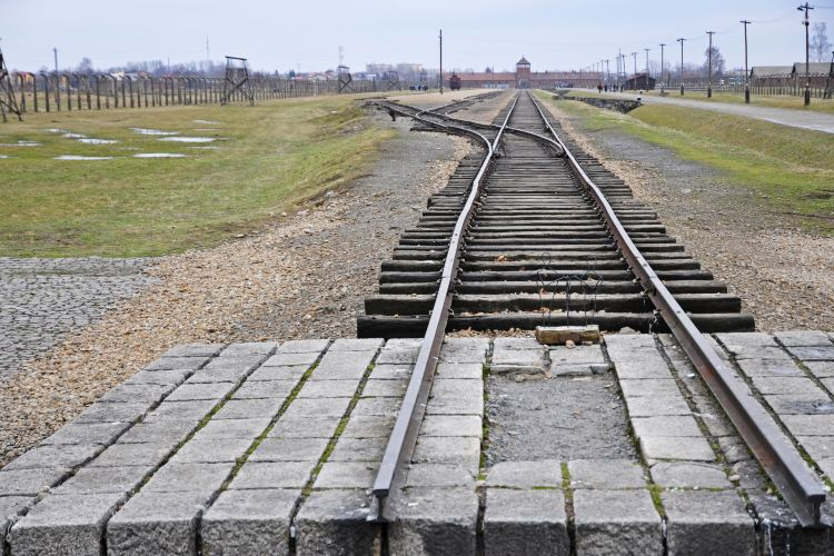 Memorial and Museum Auschwitz-Birkenau4