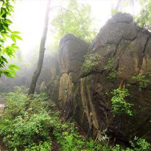 金龙山国家森林公园旅游景点攻略图