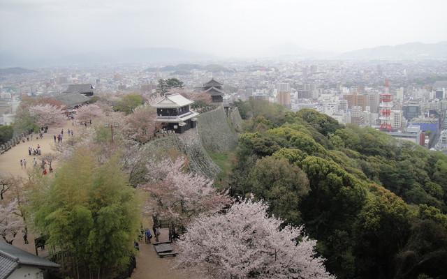 日本四国游