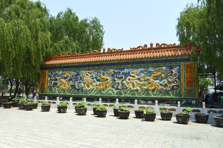 Baiyangdian Culture Yuan1