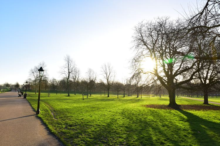 Kensington Gardens3
