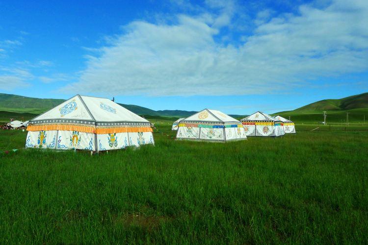 Jinyintan Grasslands1