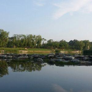那木斯莱湿地旅游景点攻略图