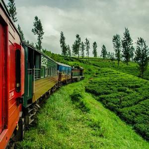 贾夫纳游记图文-84天,斯里兰卡从南向北