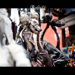 拉巴斯游记图文-我的旅行之旖旎美洲--玻利维亚10
