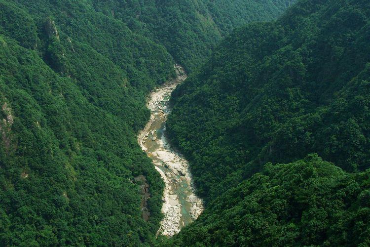 저둥 대협곡2
