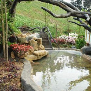 天邑森林温泉旅游景点攻略图