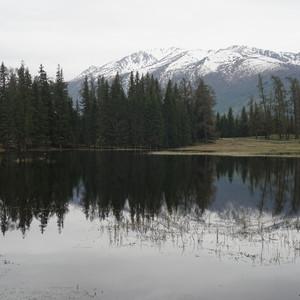 精河游记图文-大美新疆二十日自驾游之四——喀纳斯湖、白哈巴