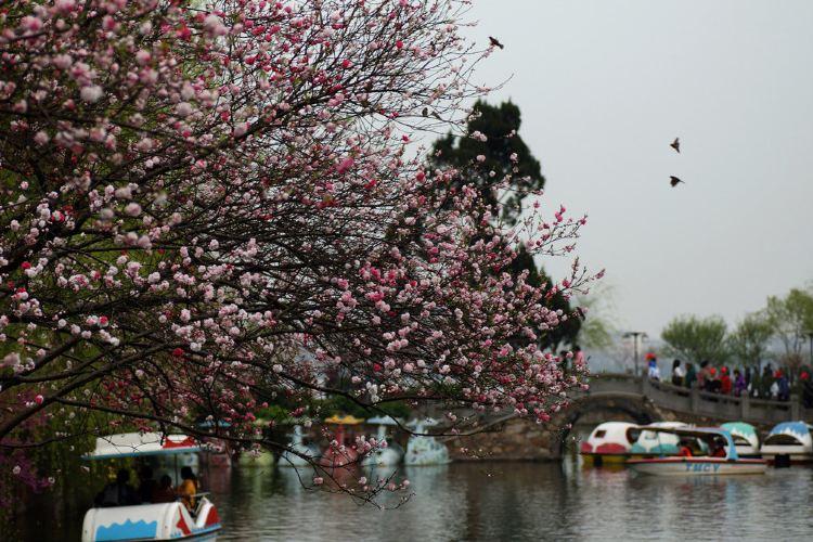 리호중앙공원1