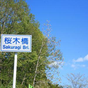 登别樱花道旅游景点攻略图