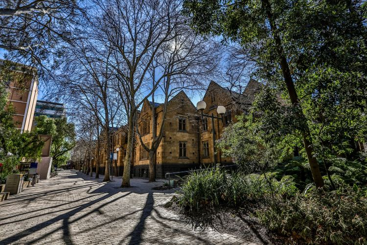 The University of Melbourne1