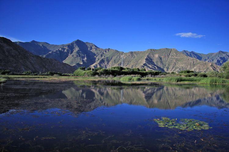 拉魯濕地自然保護區3