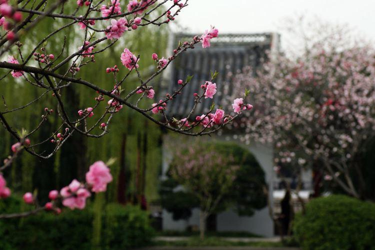 리호중앙공원2