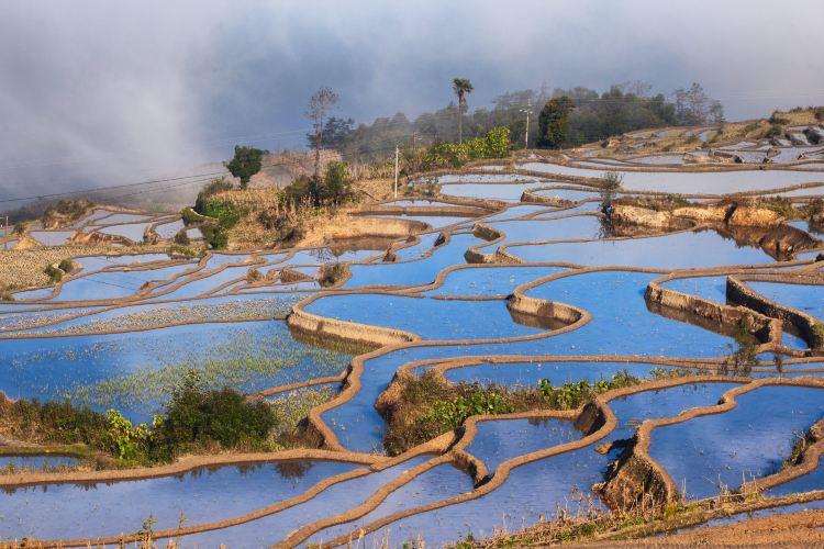 Honghe Hani Rice Terraces4