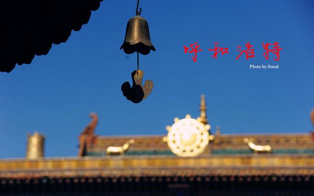 #新年#春节,内蒙一样玩翻天