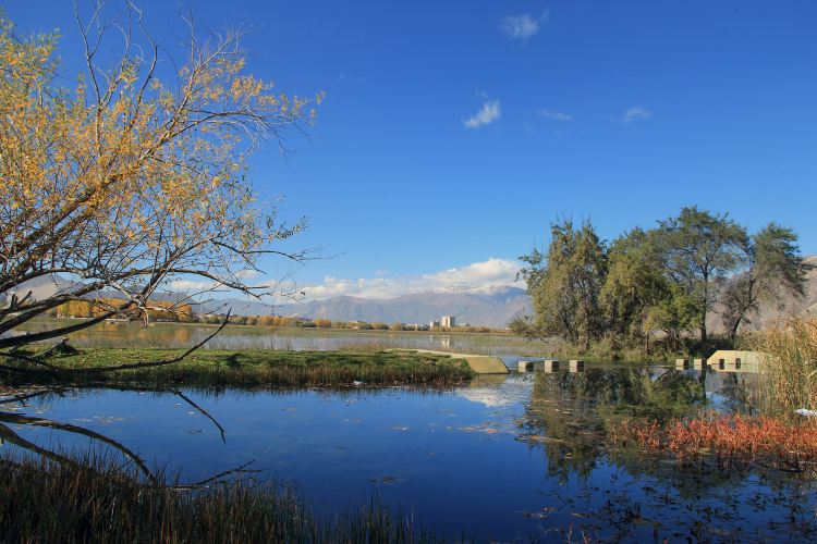 拉魯濕地自然保護區2