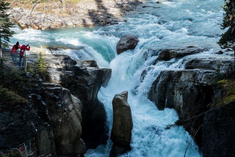 Jasper National Park1