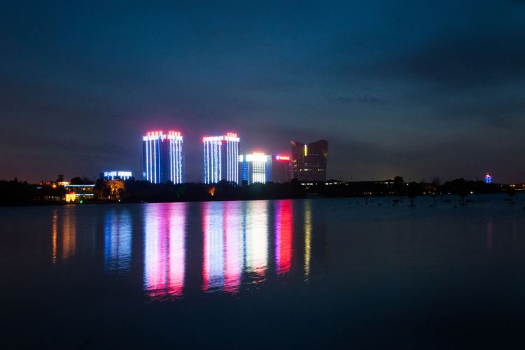 Jiyang Lake Ecological Park1